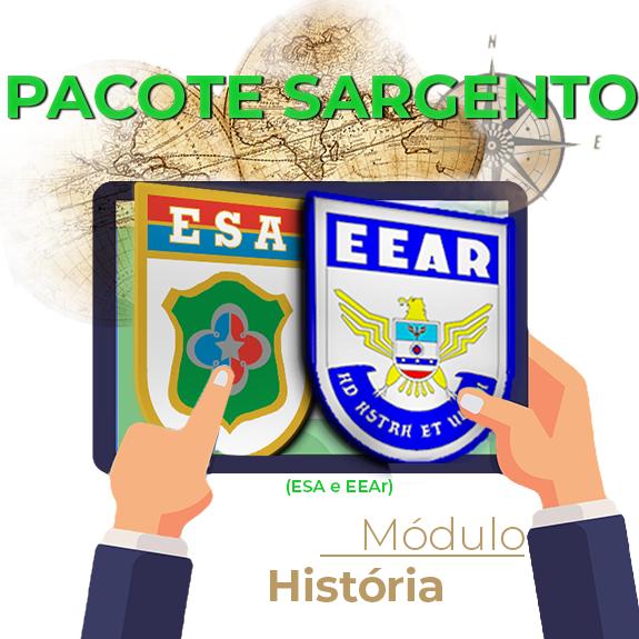 Módulo Sargento - História